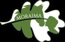 cropped-logo-inma1.png
