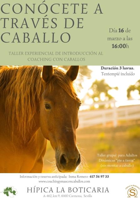 Taller Coaching Boticaria-Sevilla