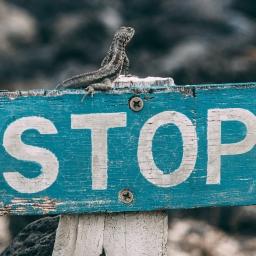 """Haz un """"Stop"""""""
